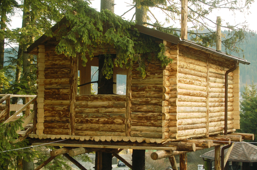 Large log tree house.