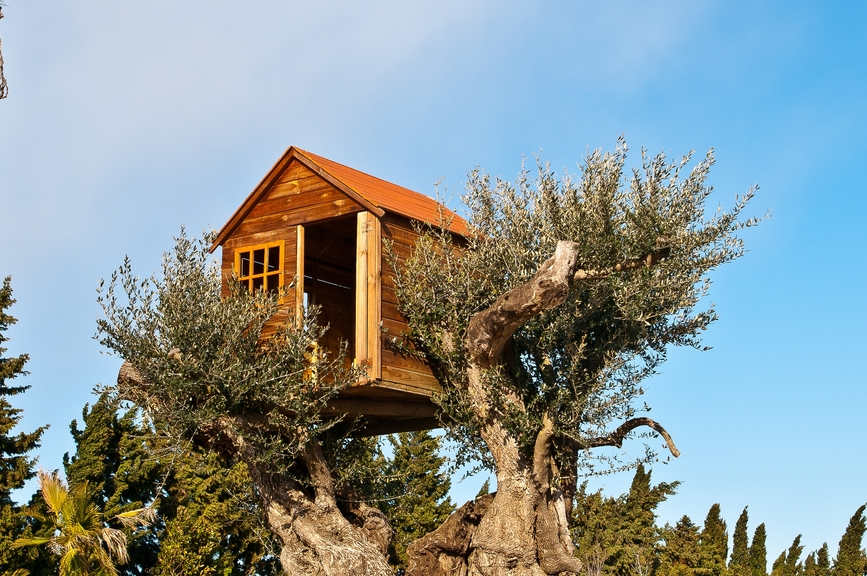 Towering tree house perched on top of a tall tree.
