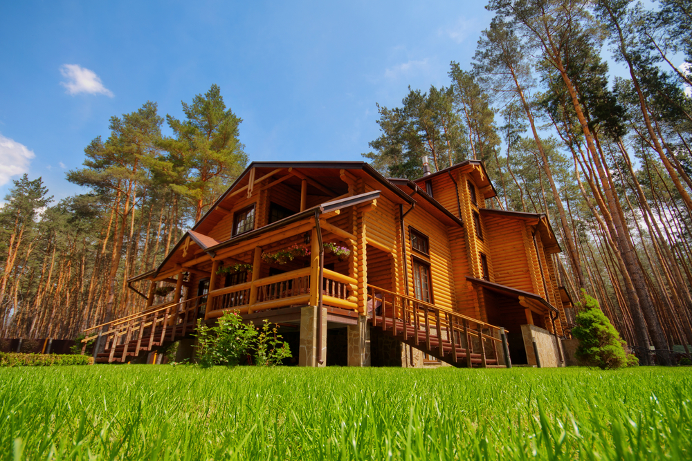 Log home in a field on the edge of an evergreen tree forest