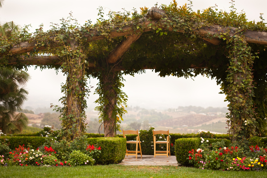 Huge vine-covered gazebo in the middle of formal gardens
