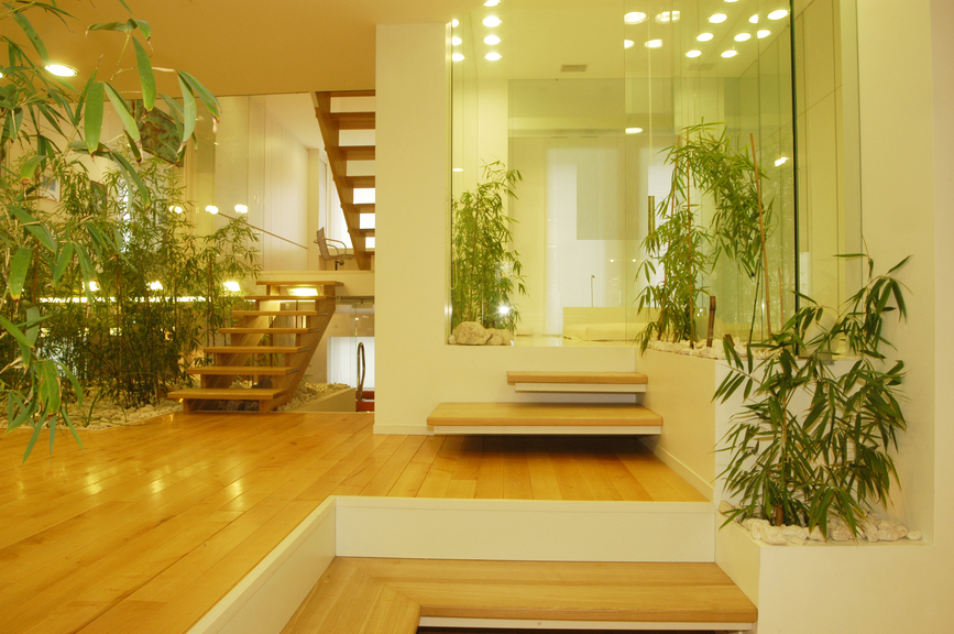 Wooden staircase with open risers and no balustrade