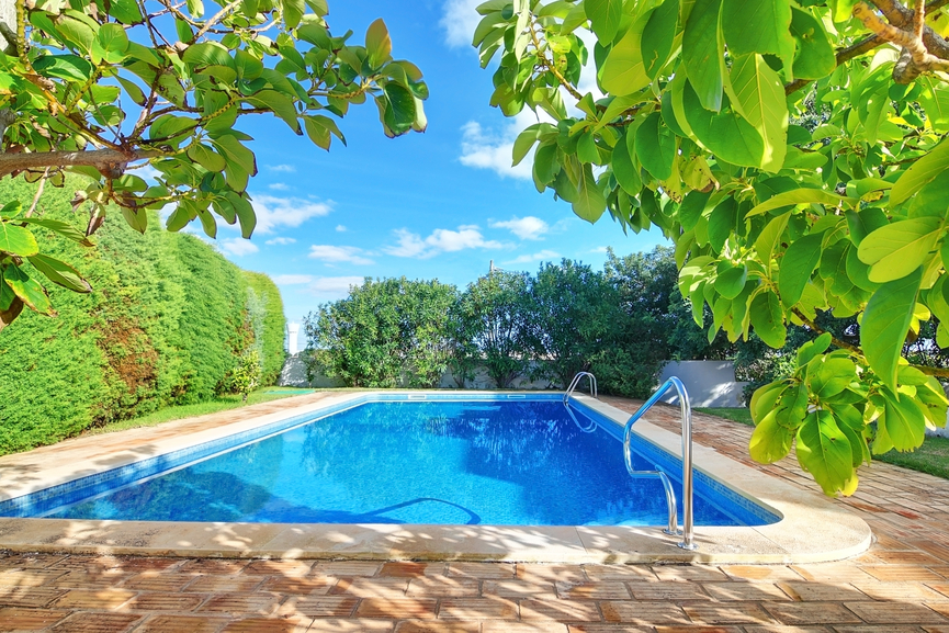 Large backyard pool bordered by large tree hedge