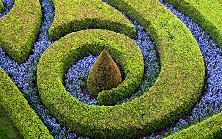 Topiary garden in spiral design with flower inlay