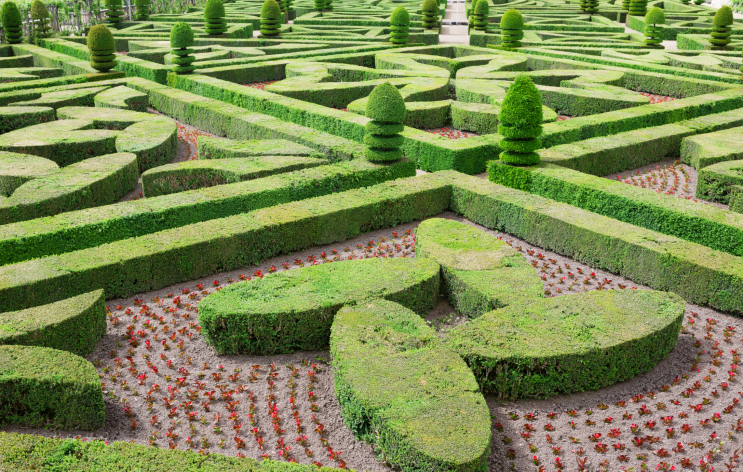 Extensive topiary garden split up into multiple sections