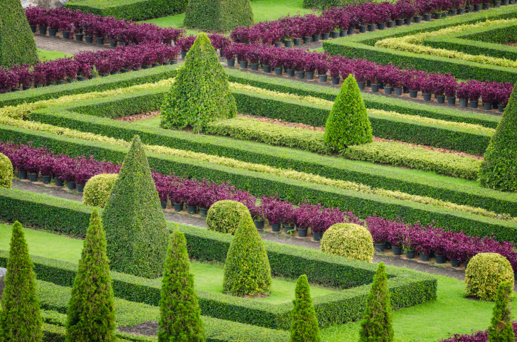 Extensive topiary gardens with cone trees, topiary frames and plants