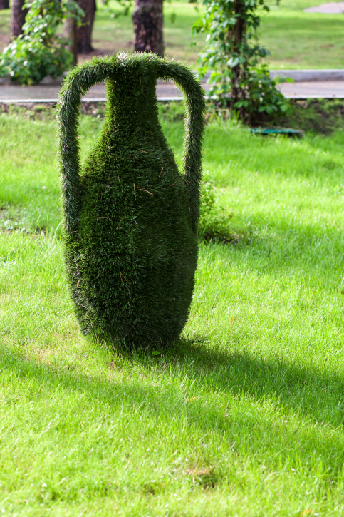 Topiary plant in the shape of a jug