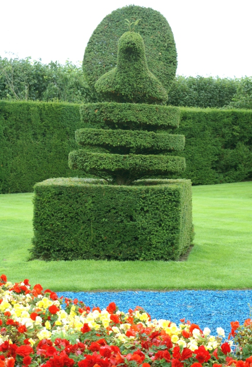 53 stunning topiary trees gardens plants and other shapes for Garden topiary trees