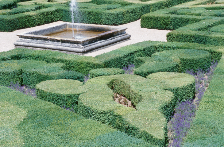Large topiary garden with wide frame and various shapes