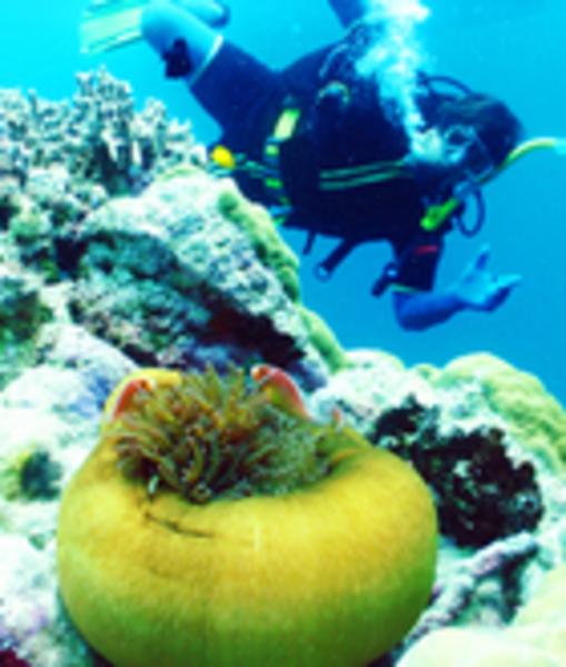 Underwater lu