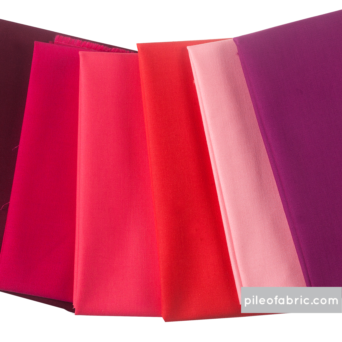 Berrylicious Bundle in Solids