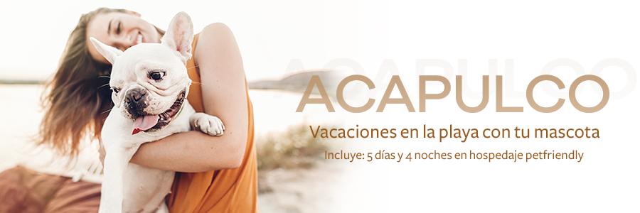 Acapulco Pet Friendly 5 días y 4 noches.