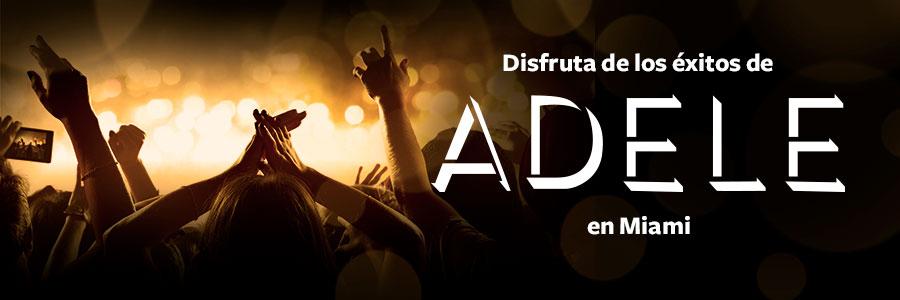 Asiste al concierto de Adele en Miami