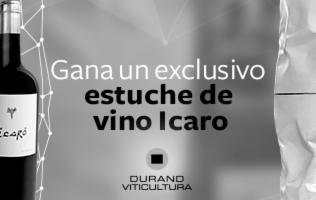 Estuche de vino Icaro por el artista José Durand