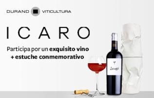Estuche de vino Icaro por el artista Sebastián Beltrán