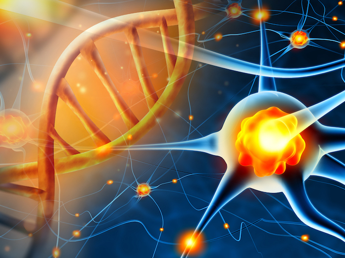 FDA Grants Orphan Drug Designation to NSI-189 for Treatment of Angelman Syndrome