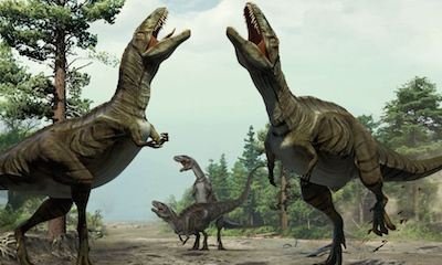 Ouch! 70 Million Years Later, a Dinosaur Diagnosed With Arthritis