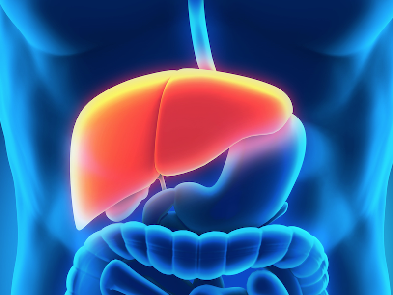 AATD-Associated Rare Liver Disease Treatment Shows Strong Activity in Phase 1 Study