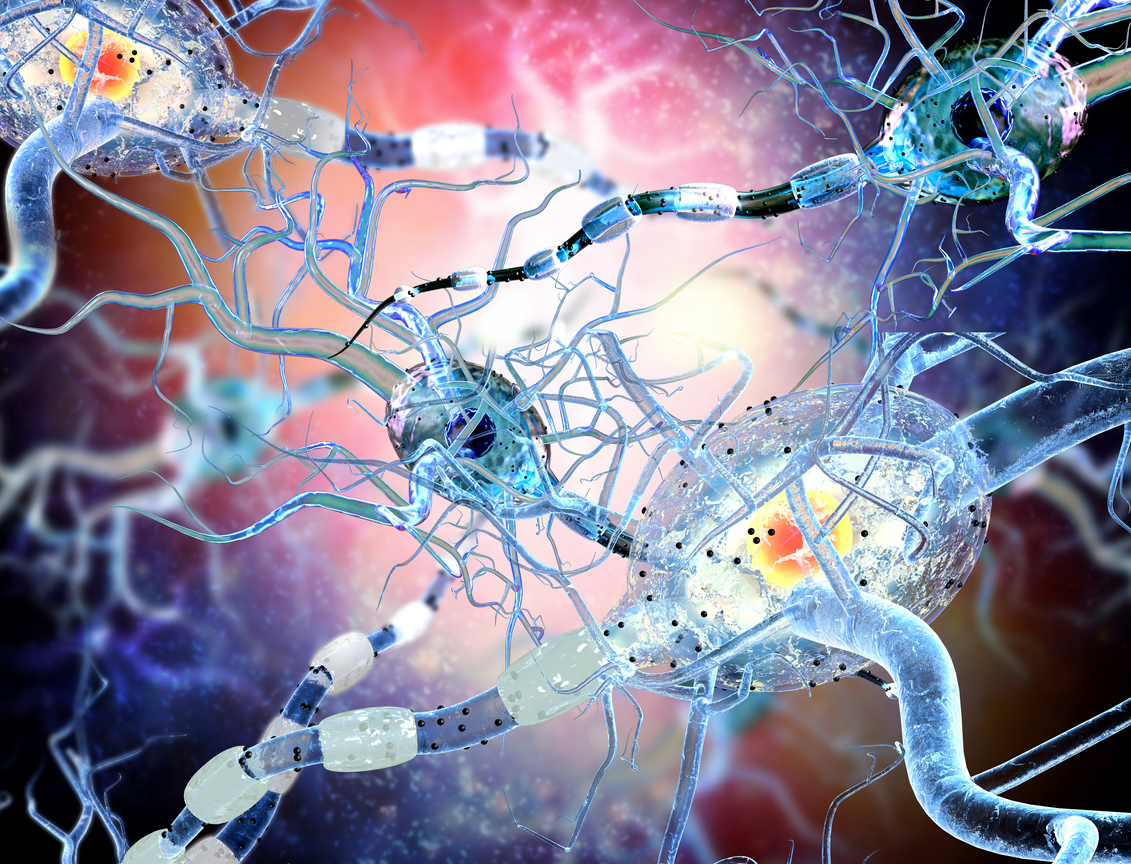Breakthrough Multiple Sclerosis Treatment Could Be Found Using Brain's Lympathic Vessels