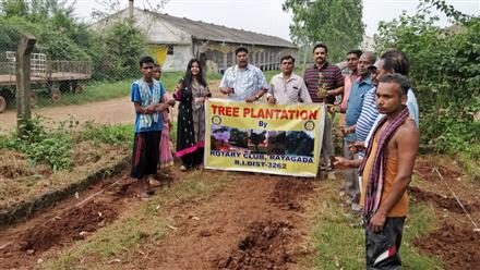 Tree plantation | Rotary Showcase