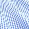 6112 13 bishop meander lt blue check fabric small