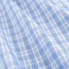 A009 13 graf blue check small