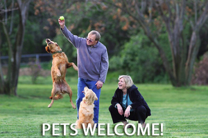 Petswelcome