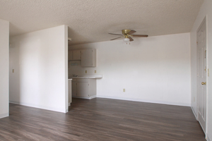 Ingalls_living_room_2