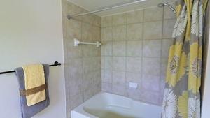 Master_bathroom2