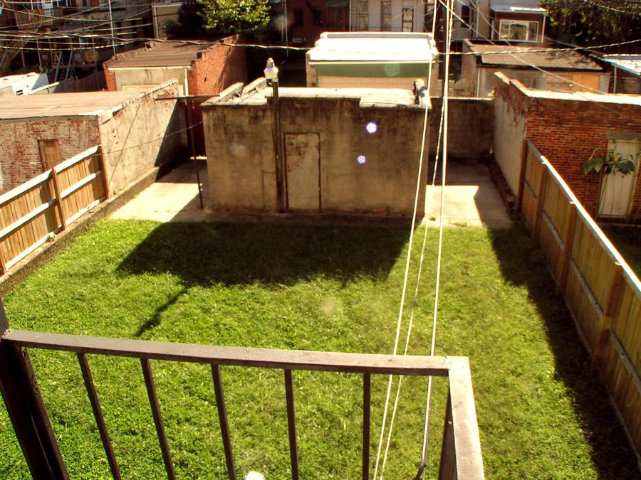 1810_back_yard
