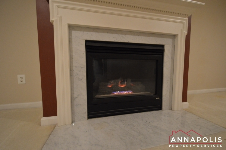 769-howards-loop-id991-family-fireplace