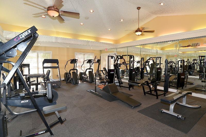 11901_4th_gym