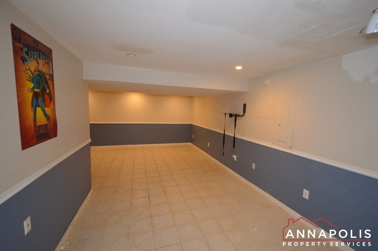 400-duvall-lane-id1042-basement-an