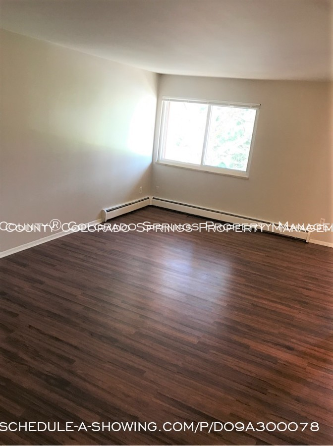 Apartment_for_rent_close_to_peterson_air_force_base_afb-living_room-3