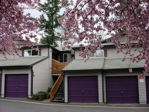 Apartment for Rent in Tigard