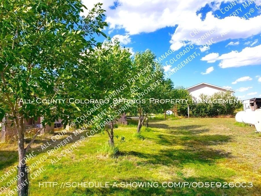 Peaceful_country_home_for_rent__close_to_schriever_air_force_base-fruit_trees