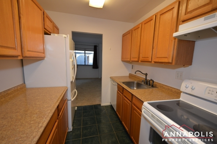 1067-cedar-ridge--id337-kitchen-anb