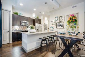 Alexandowntown-kitchen-1-2250x1500