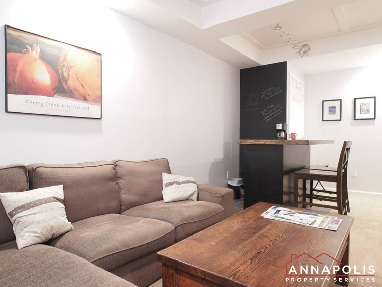21-city-gate-lane-id1079-basement-couch