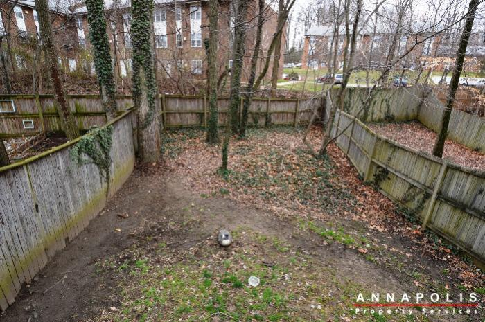 935-forest-hills-ave-id702-back-yard