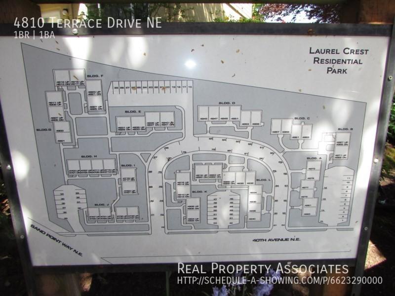 4810 Terrace Drive NE, Seattle WA 98105 - Photo 12