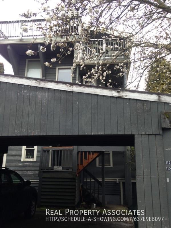 1127 N 85th Street, Seattle WA 98103 - Photo 15