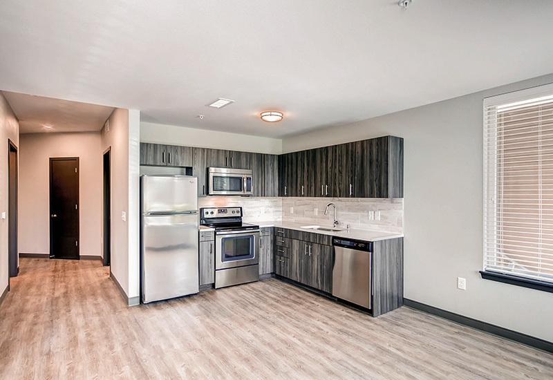 Ba detroitterraces unit103 kitchen1 800x550
