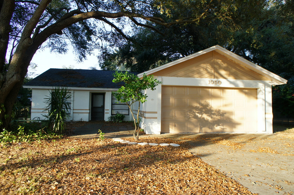 Apartments For Rent Near South Lakeland Fl