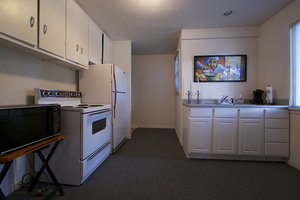 Kitchen_2215_ford