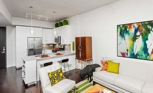 The_bowie_kitchen_living