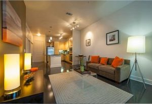 Lofts_at_the_triangle_living_room