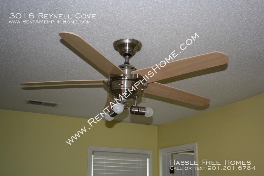 3016 reynell   fan