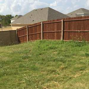 Picture_of_backyard