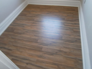 Beautifully renovated apartment in the Grove - Missouri apartments for rent - backpage.com