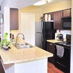 Montecito_austintx_kitchen_new